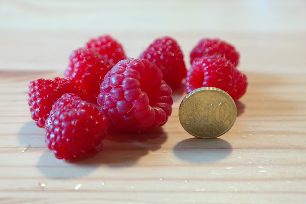 Your raspberry expertise (aka. knowledge on a niche topic) could earn you money