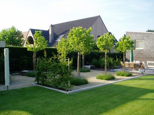Eigentijdse tuinen tuinontwerp rik claes - Fotos terras ...