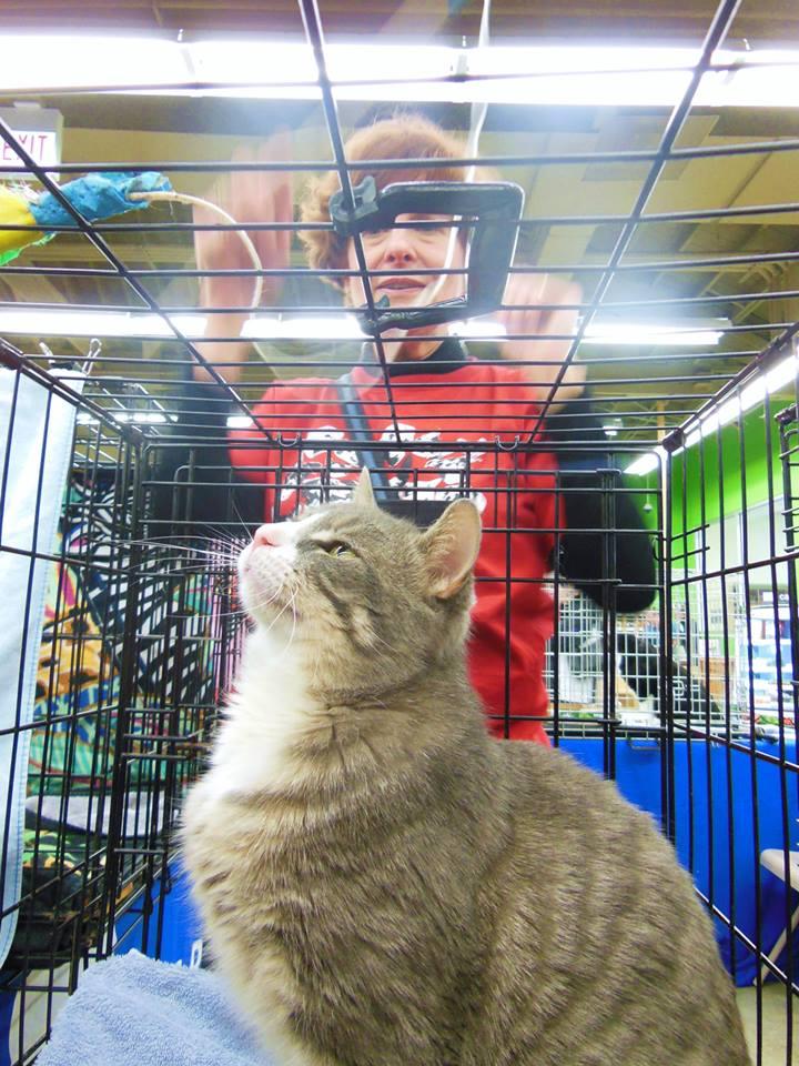 tamari in cage.jpg