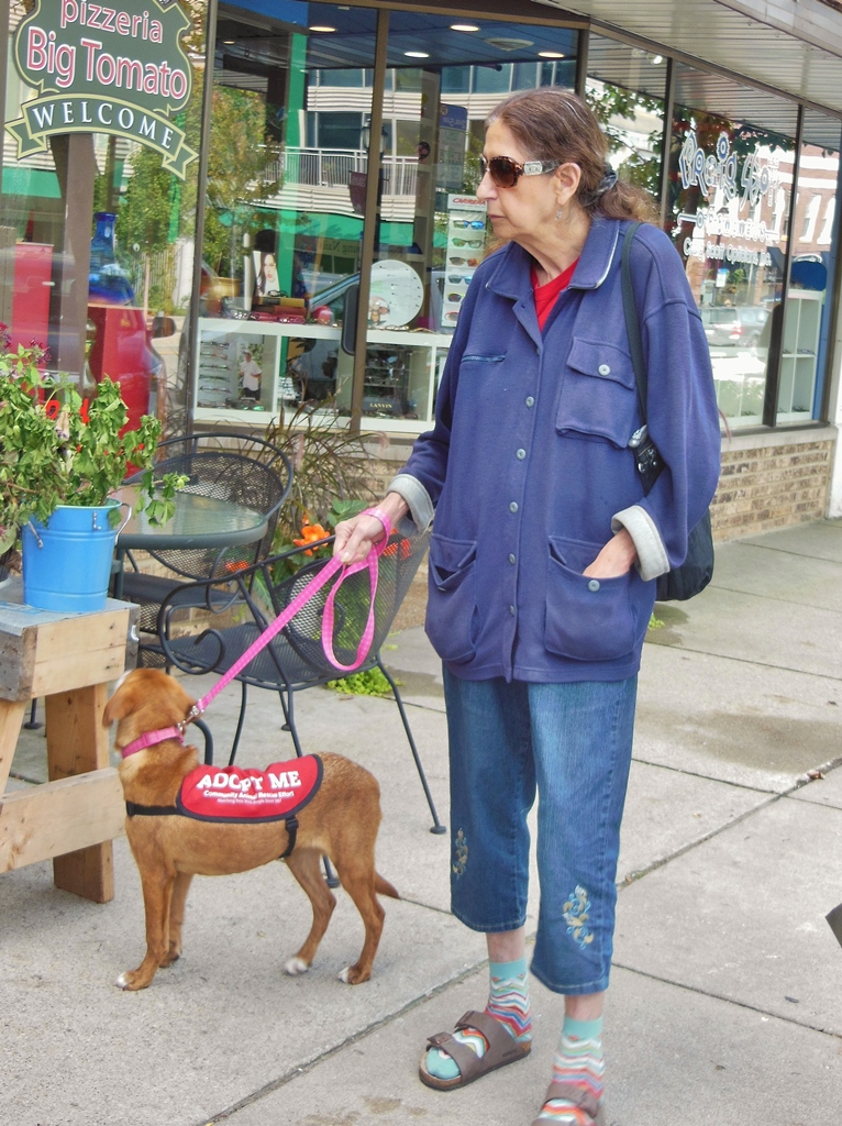 Pauline on dog walking duty at an adoption event.