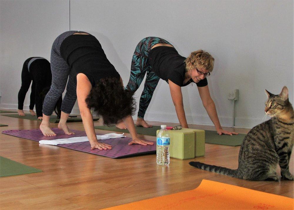 October 2016 Yoga5.jpg