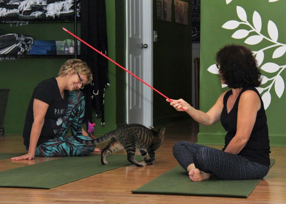 October 2016 Yoga6.jpg