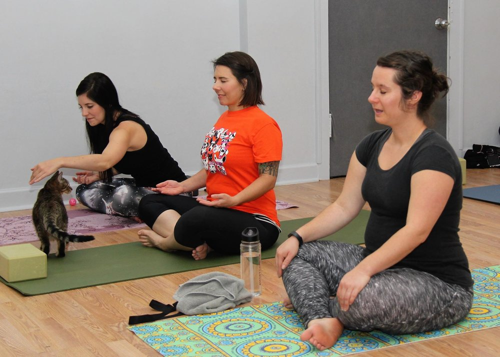 October 2016 Yoga13.jpg