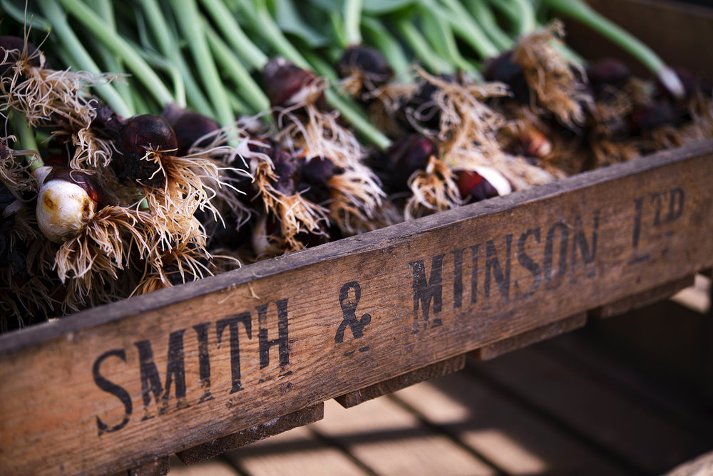 Smith-and-Munson-Farm-28.jpg