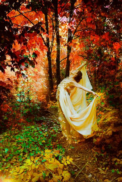 Autumn Landing