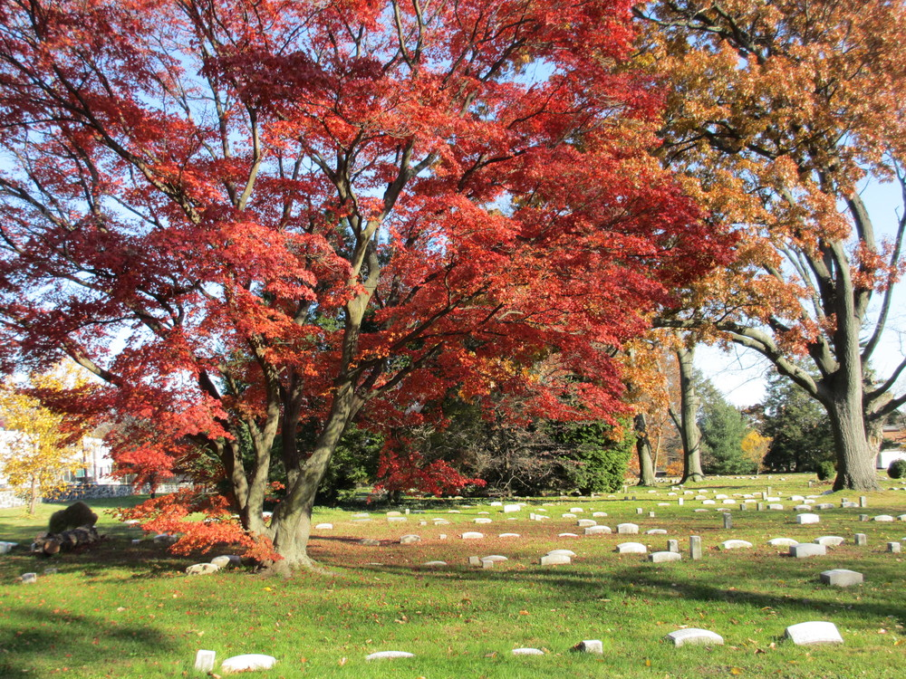 Friends Southwestern Burial Ground in the Fall.