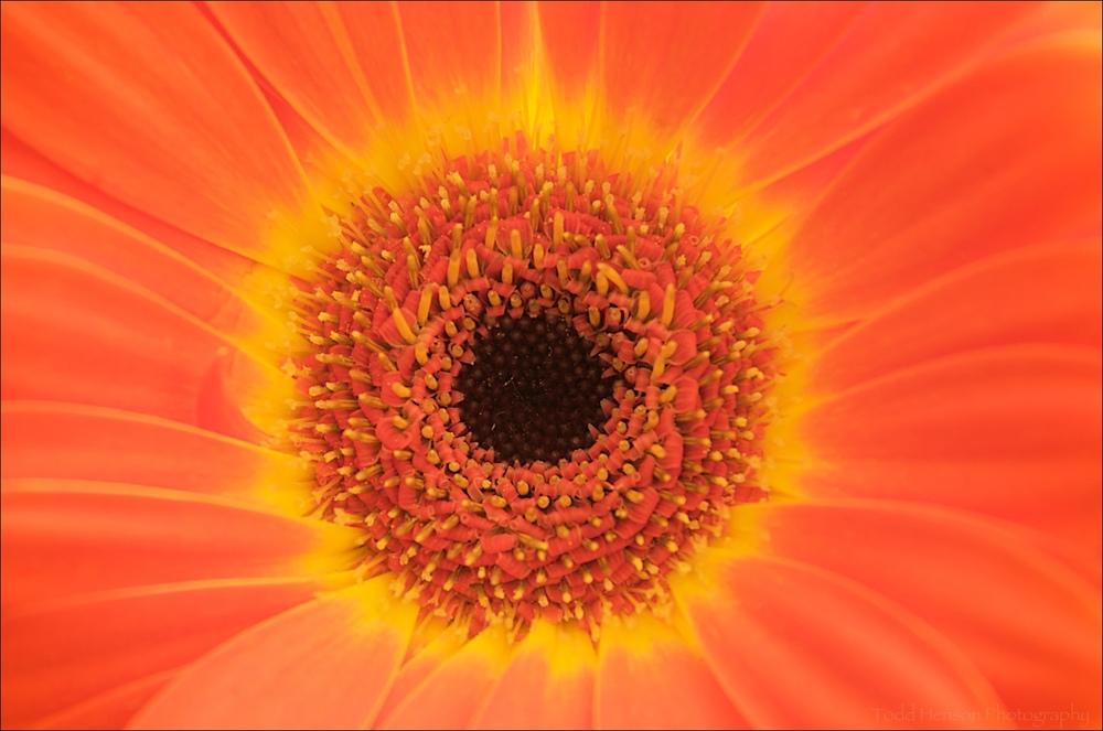 20090505_19-16-40_THP.jpg