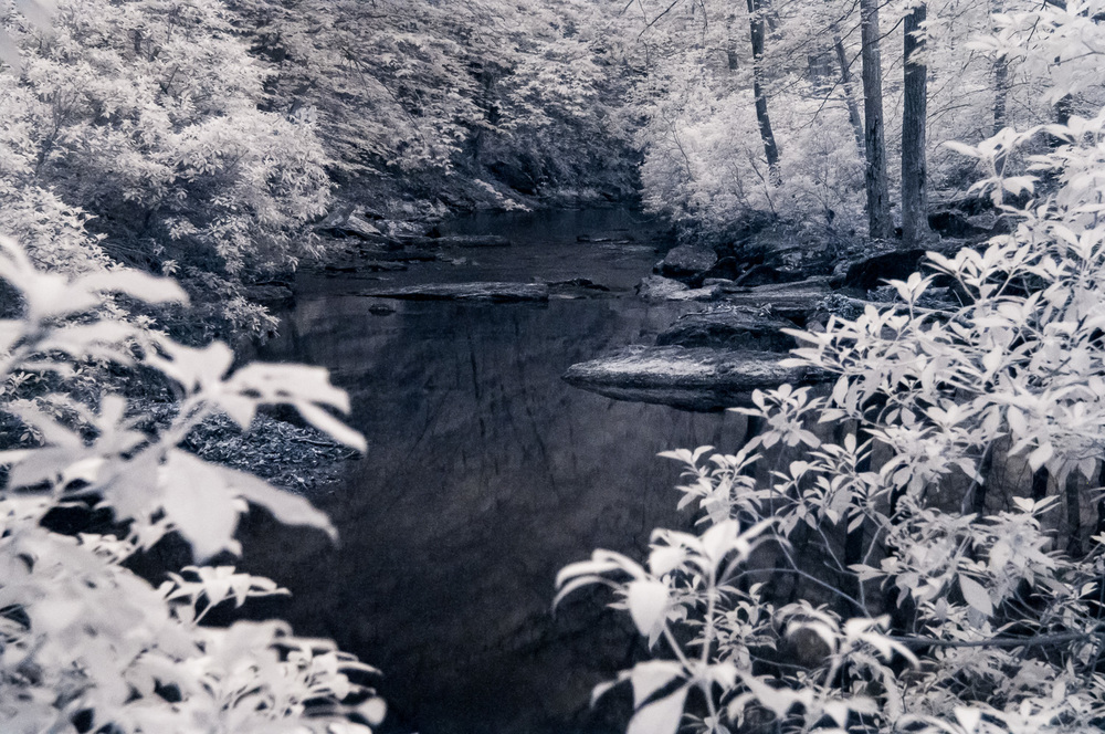 Infrared image of Quantico Creek along the Birch Bluff Trail in Prince William Forest Park