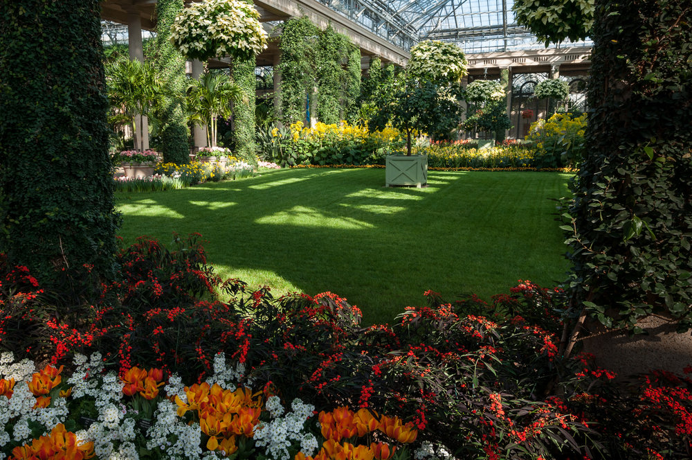 Another view inside the Conservatory