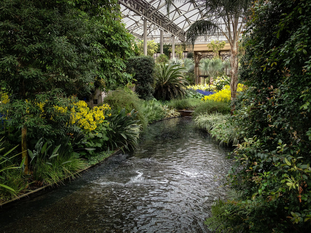 3: Streams inside Longwood Gardens Conservatory