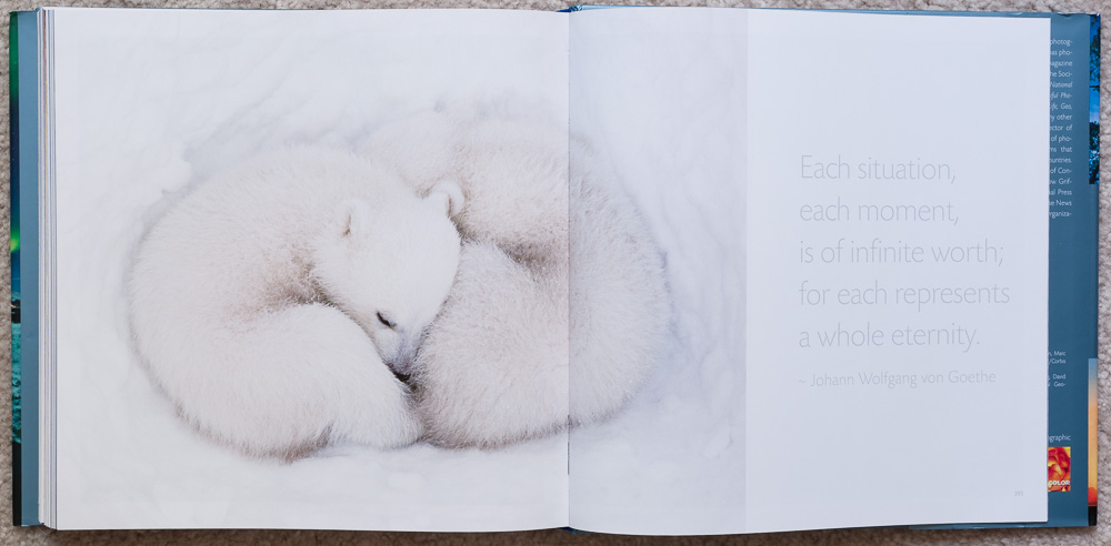Pages 394-395 of   Stunning Photographs  , in the section titled:  Intimacy