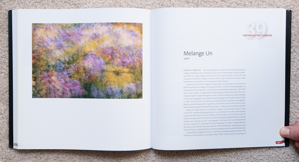 Why Photographs Work  : Photograph 39:  Melange Un  by Freeman Patterson