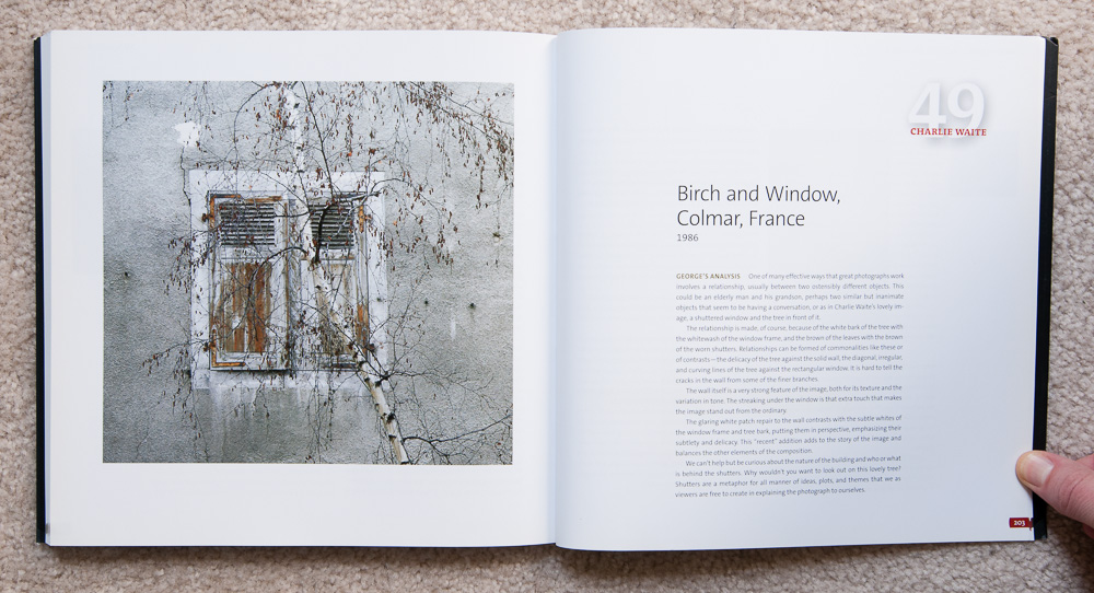 Why Photographs Work  : Photograph 49:  Birch and Window, Colmar, France  by Charlie Waite