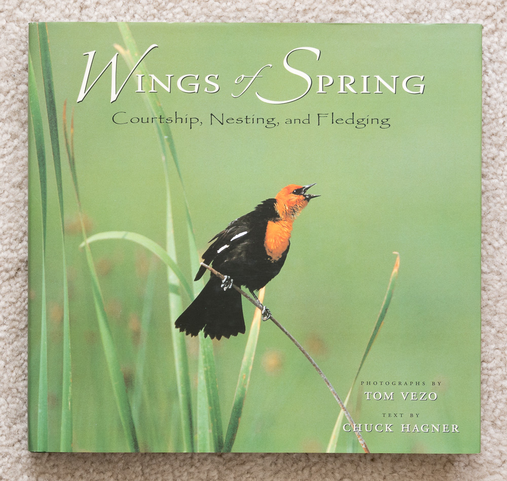 Wings of Spring: Courtship, Nesting, and Fledging   (book cover)