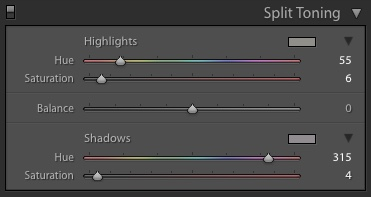 Split Toning settings I used in Adobe Lightroom