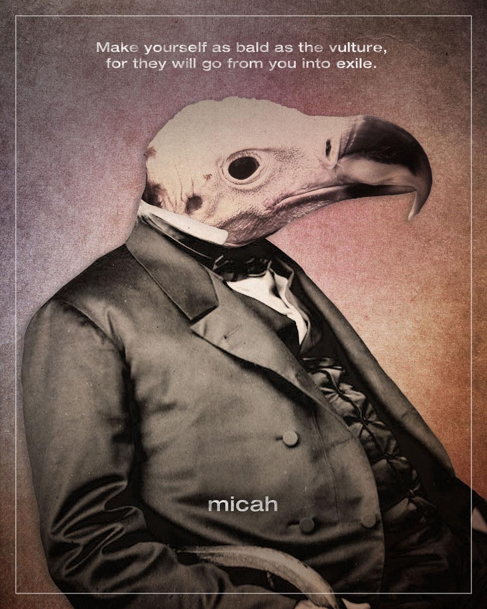 33-Micah-01_Jim-LePage.jpg