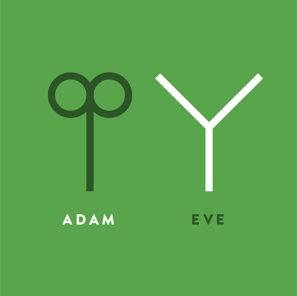 Biblicons_Adam-Eve_1x1.png