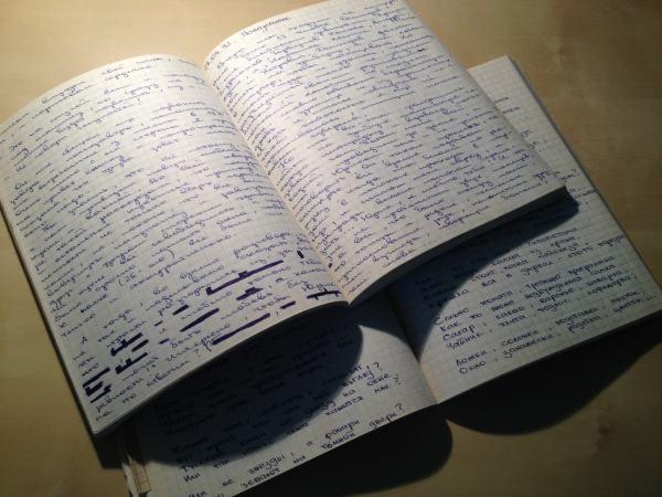 Ksenia Anske diaries.jpeg