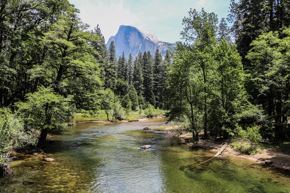 Around every corner was an amazing view. This was taken from the bridge into the camp site looking towards the Half Dome.
