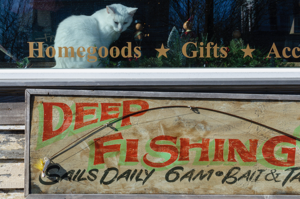 deepfishinglg.jpg