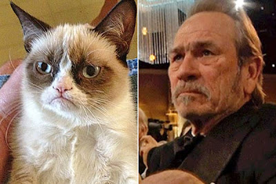celebrities-as-internet-memes-grumpy-cat-tommy-lee-jones.jpg