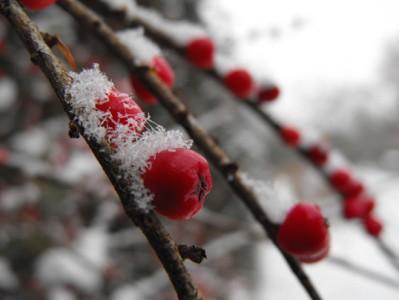 Winter_Yoga1-399x300.jpg