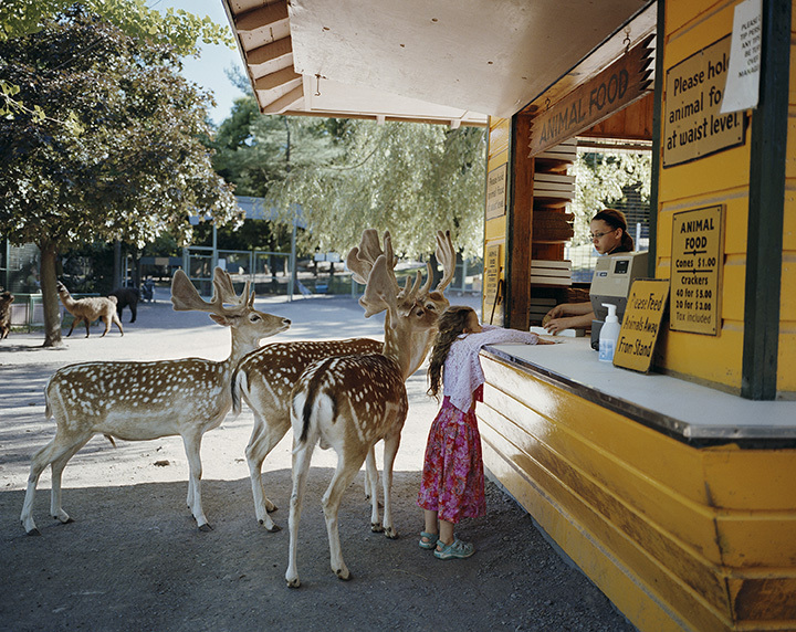 Robin Schwartz, Deerline, 2005, from Amelia and the Animals (Aperture, 2014)