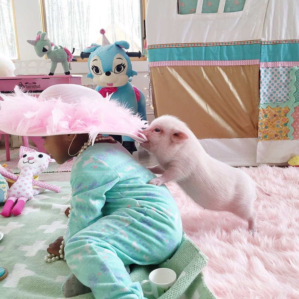 Adorable-Pictures-Toddler-Her-Pet-Pig (2).jpg