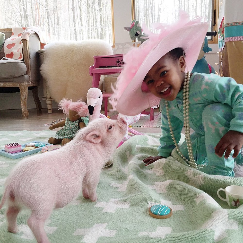 Adorable-Pictures-Toddler-Her-Pet-Pig.jpg
