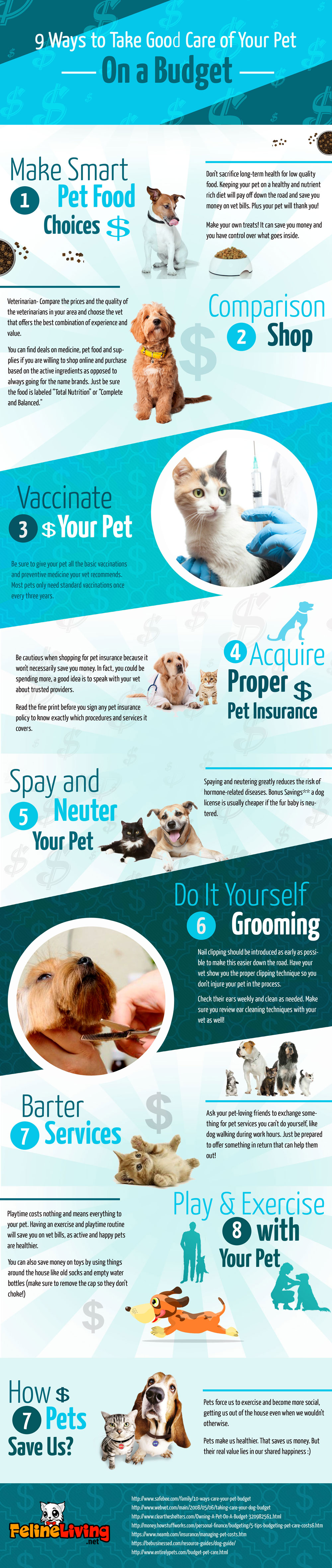 Simple Ways To Care For Your Pet On a Budget.jpg