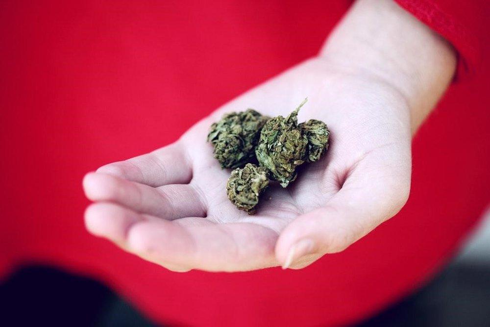 medical marijuana.Medical Marijuana Breakthroughs Over The Years