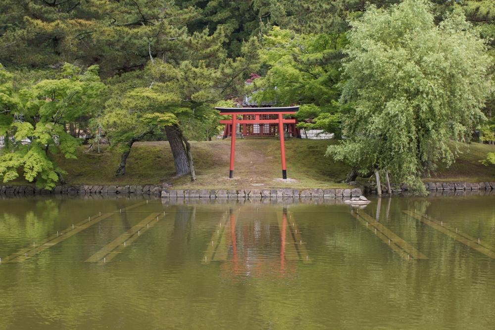 Nara Torii.jpg