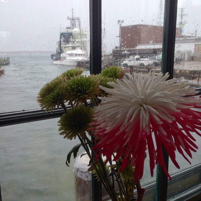 Rainy day on the cape calls for waterfront dining.