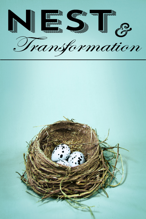 NEST&Transformationjpg