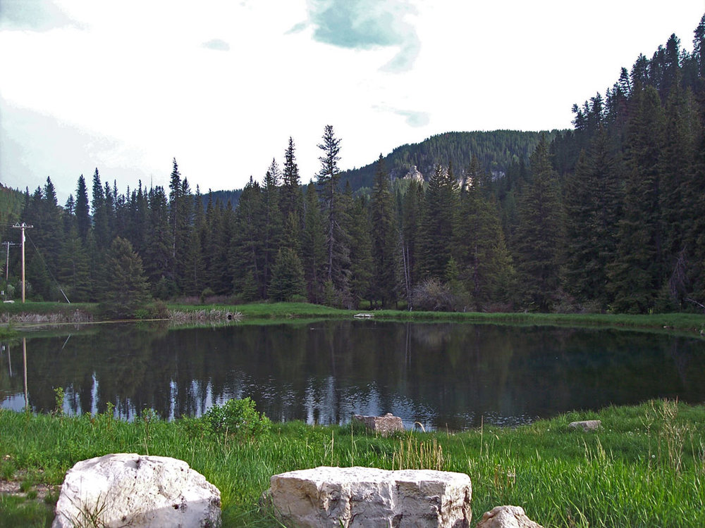 The beautiful little Yates pond a couple hundred yards down from Wickiup sports really nice Browns as a catch and release with artificial bait.