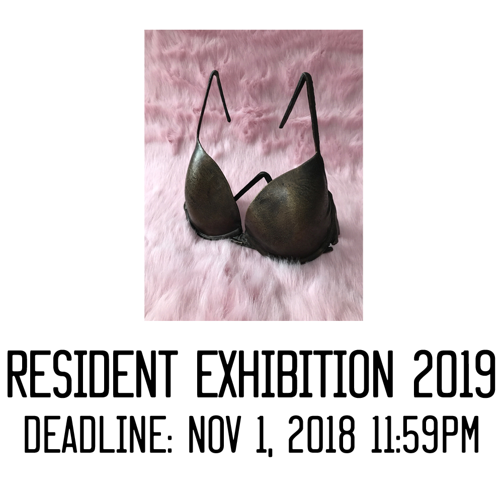 In part of our continuing effort to support and provide opportunities for artists, we guarantee any residents who participate in our residency program an exhibition in our gallery. 2019's resident exhibition will be   curated by Carmen Hermo  , Curator at the Brooklyn Museum.  R  esidents can contact trestle@brooklynartspace.org for access to application).