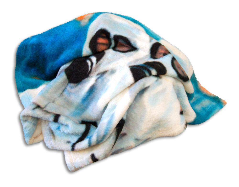 Anita Cruz-Eberhard & David Howe, Security Blankets, 2018, digital image printed on super-soft fleece, 30 x 40 in. (view 2)