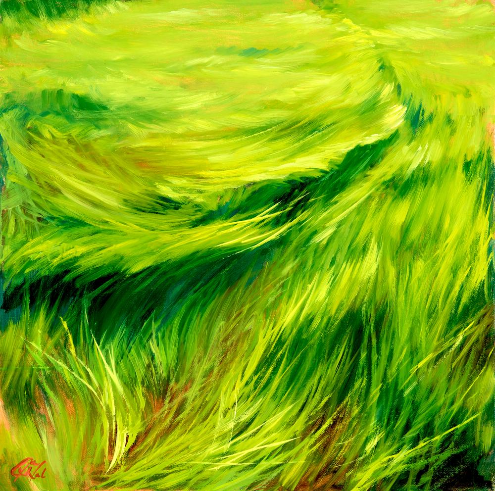 Dalrymple_Native; Spartina patens (marsh grasses).jpg