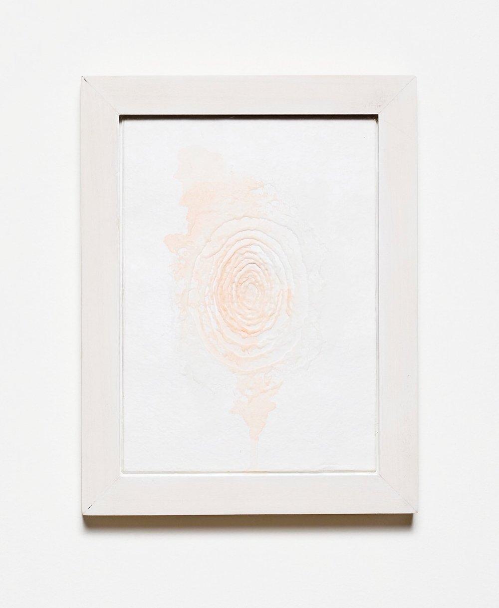 Rosen-Jess-Spill.jpg