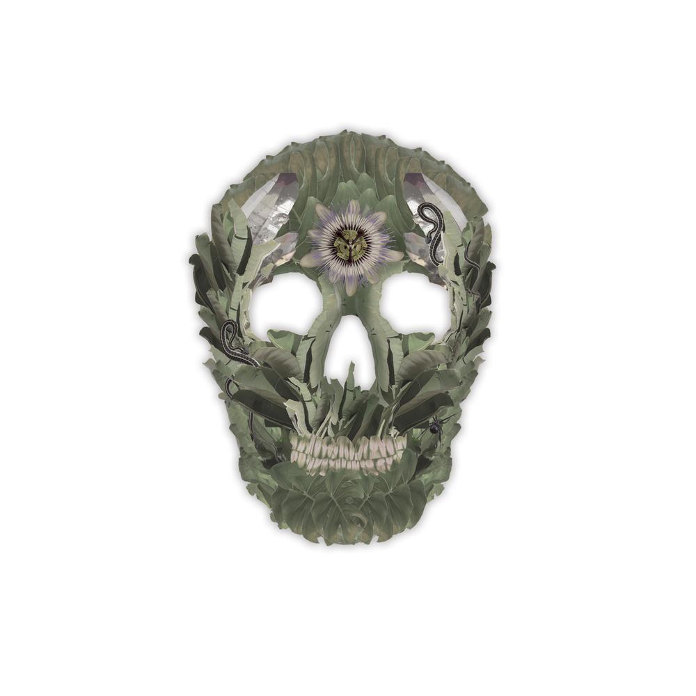 jungle_skull.jpg