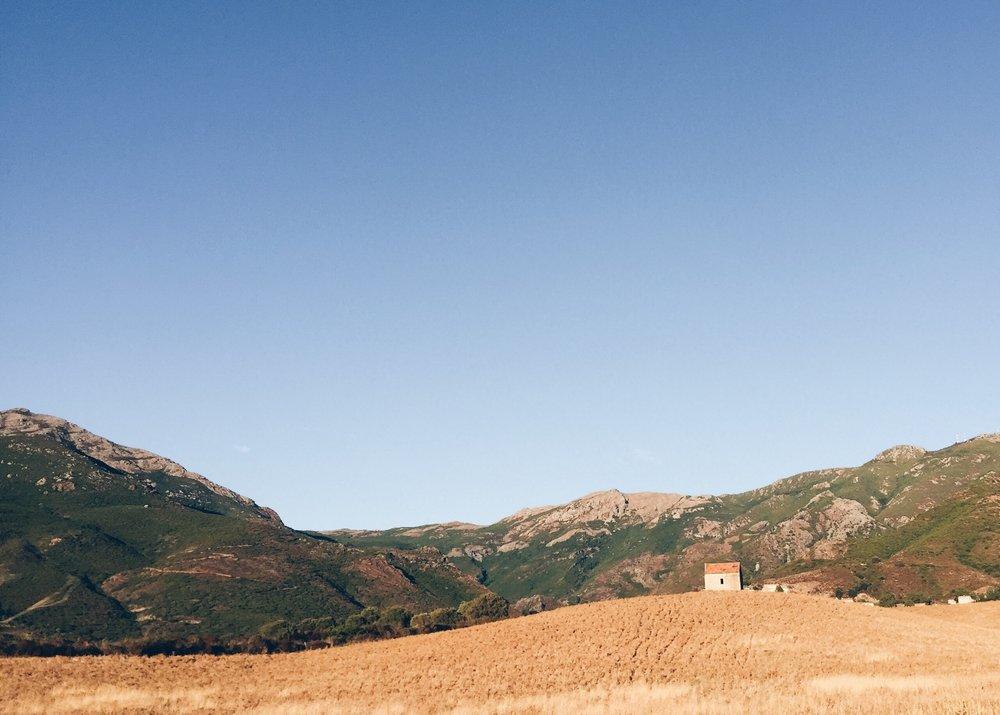 Patrimonio_cap_corse.jpg