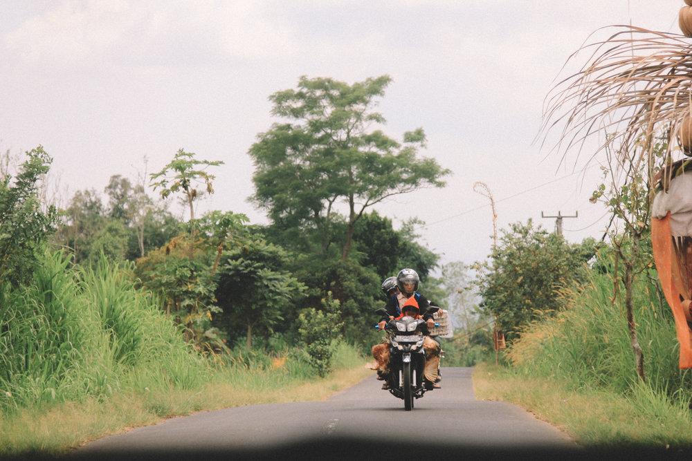 jatiluwih-road-bali-blog-onmyway.jpg