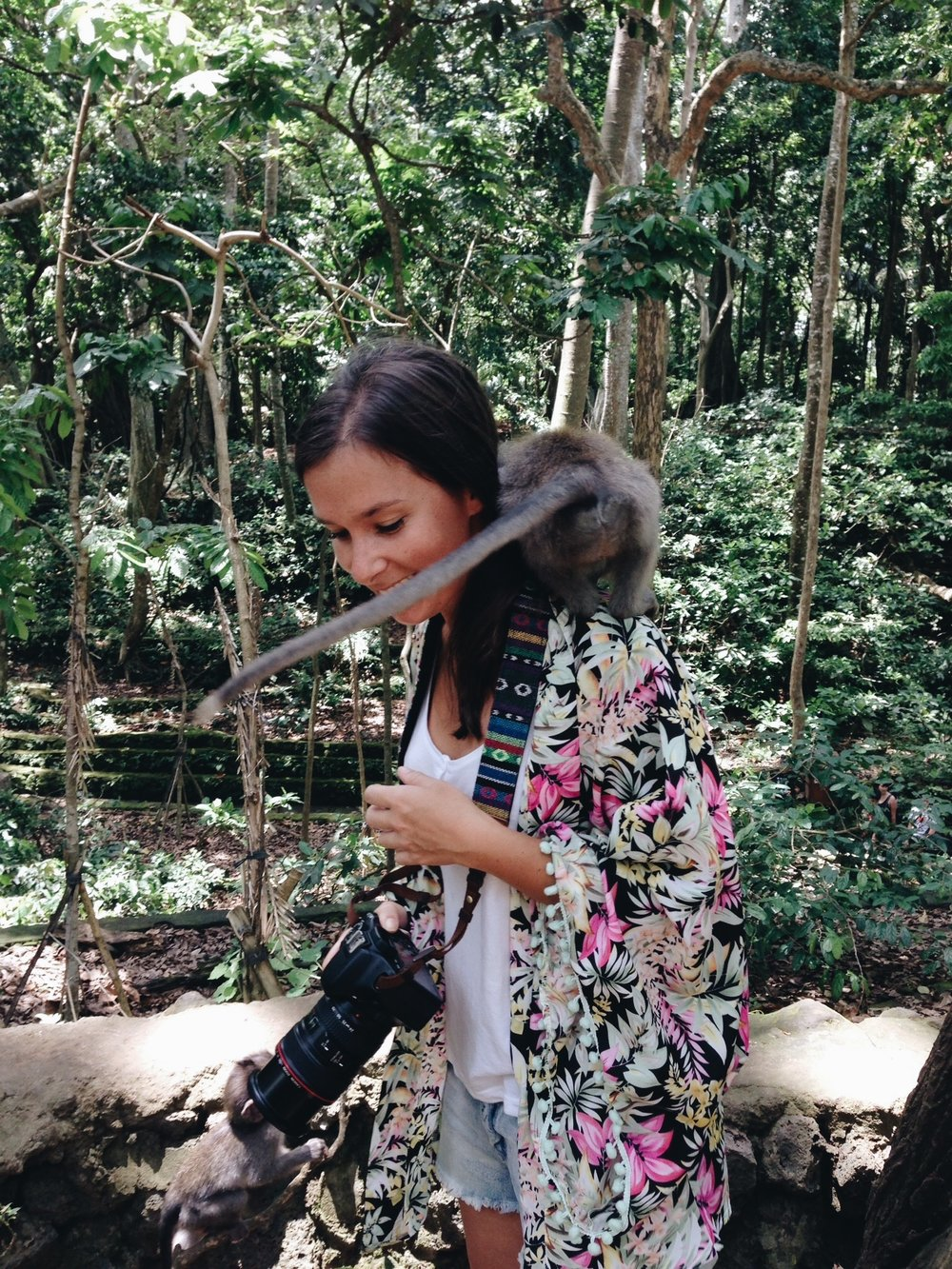 monkey-forest-bali-alex.JPG