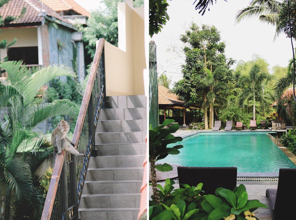 champlung-sari-ubud-hotel-ou-dormir.jpg