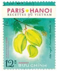 Paris-Hanoi, recettes du Vietnam