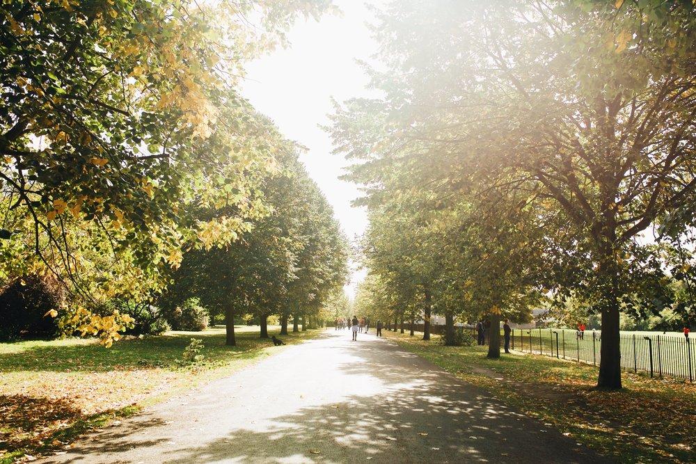Kensington-gardens-londres-blog-voyage.JPG