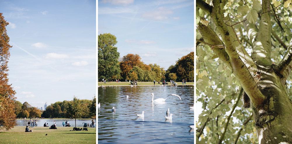 kensington-gardens-londres-que-faire.JPG