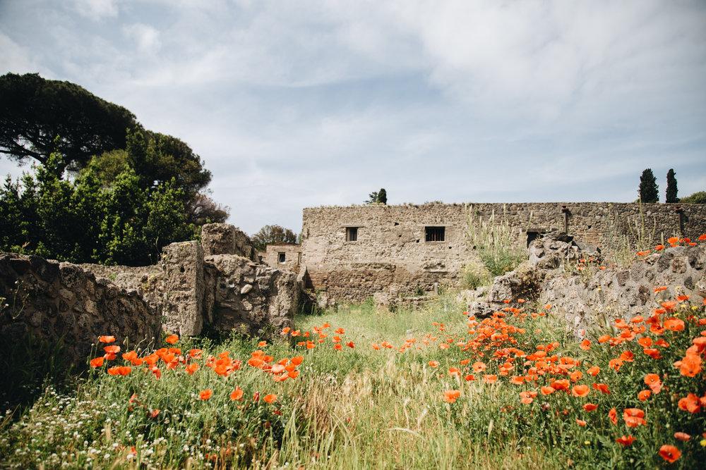 Theatre-coquelicotes-pompei-visite-site-archeologique-printemps.jpg