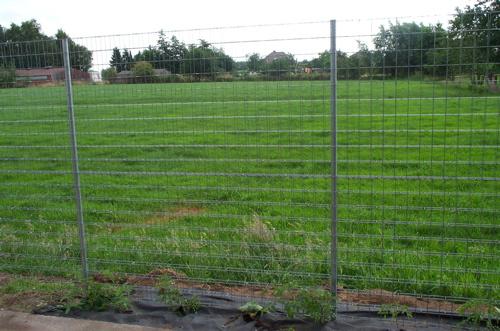 2007017 SISMO S6 Fence - 7.jpg