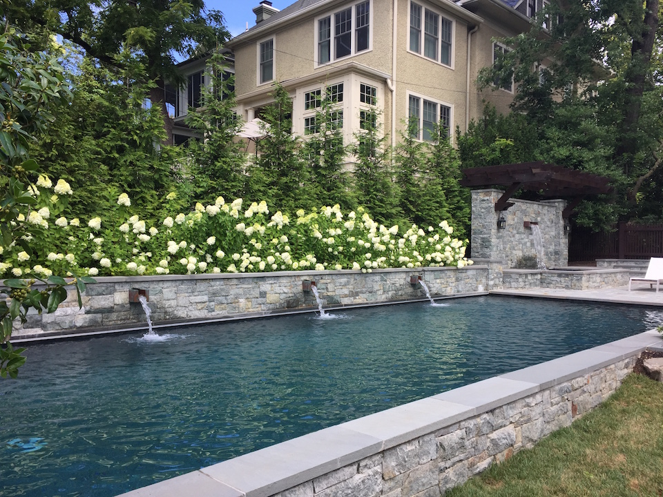 A spa like retreat in DC greets these clients in their backyard when they come home.